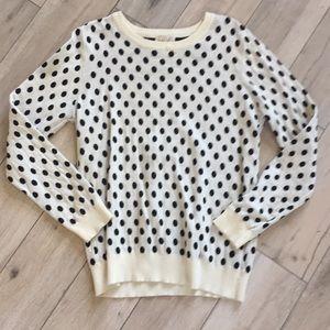 41 hawthorn polka dot sweater
